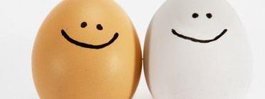 ¿Cuáles son las bondades de los huevos?