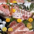 7 Animales que se comen vivos!